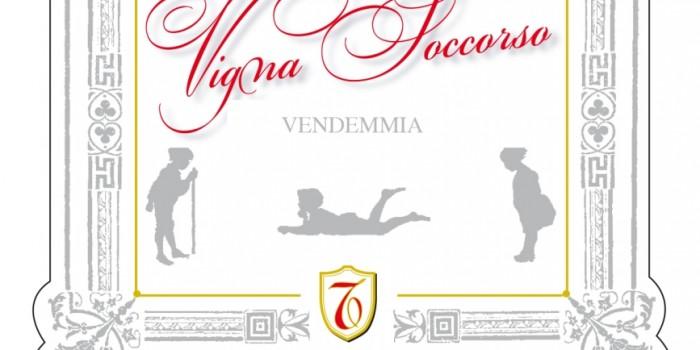 Vigna-Soccorso_brunello
